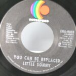 BLUES-FUNK-45RPM-LITTLY-SONNY-YOU-CAN-BE-REPLACED-GOING-DOWN-SLOW-261744484361-2