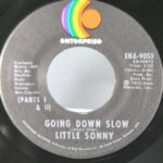 BLUES-FUNK-45RPM-LITTLY-SONNY-YOU-CAN-BE-REPLACED-GOING-DOWN-SLOW-261744484361-4