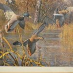 Landing-Ducks-Wetlands-Scene-by-Harry-Curieux-Adamson-1980s-Print-264630003431-3