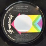 SOUL-45RPM-JACKIE-WILSON-YOU-LEFT-THE-FIRE-BURNING-WHAT-A-LOVELY-WAY-HI-261812082461-2