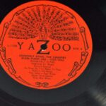 Roosevelt-Sykes-The-Country-Blues-Piano-Ace-1929-1932-Yazoo-L1033-Mint-262293803302-4
