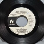 Pop-KC-The-Sunshine-Band-45RPM-1976-Promo-Copy-N-Mint-Shake-Your-Booty-192494977825-2