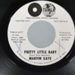45-RPM-Promo-Marvin-Gaye-Pretty-Little-Baby-Tamla-Records-Near-Mint-Rock-191593991226-2