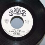 Faye-Adams-RB-45-White-Label-Promo-Warwick-Its-Nice-To-Know-It-Cant-Be-Wrong-192055261606-3