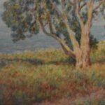 Watercolor-California-Artist-Sydney-D-Yard-Seascape-Landscape-193835485729-3
