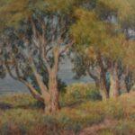 Watercolor-California-Artist-Sydney-D-Yard-Seascape-Landscape-193835485729-4